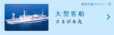 大型客船「さるびあ丸」(東海汽船のサイトへ)